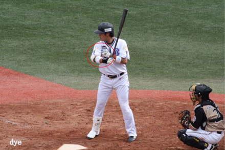 Tsutsugo_2