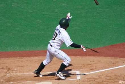 Ogasahara