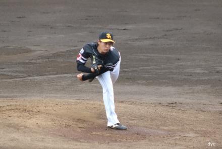 Hasegawa-h